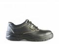 Rebel Chukka Safety Shoe
