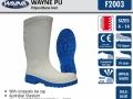 f2003-wayne-pu