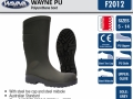 f2012-wayne-pu